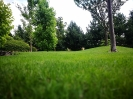 Ogród Orzesze 3